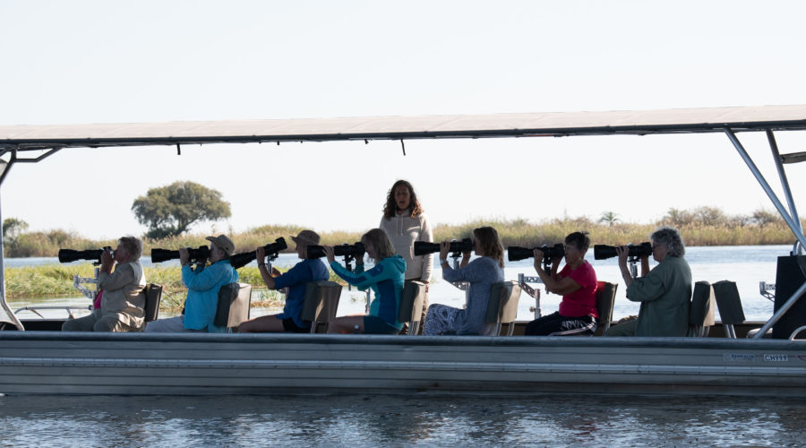 The best way to see the wildlife on the river